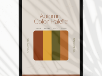 Autumn | Color Palette